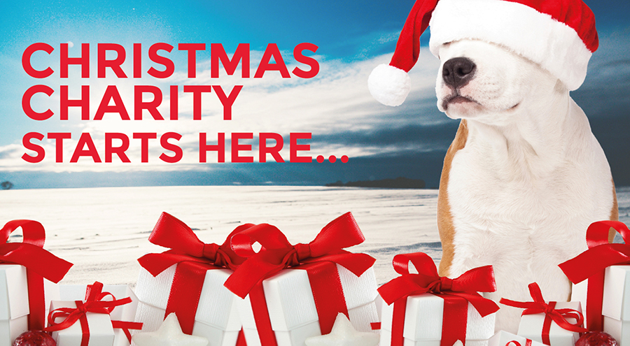 Charity Starts Here – Charity Christmas Scheme