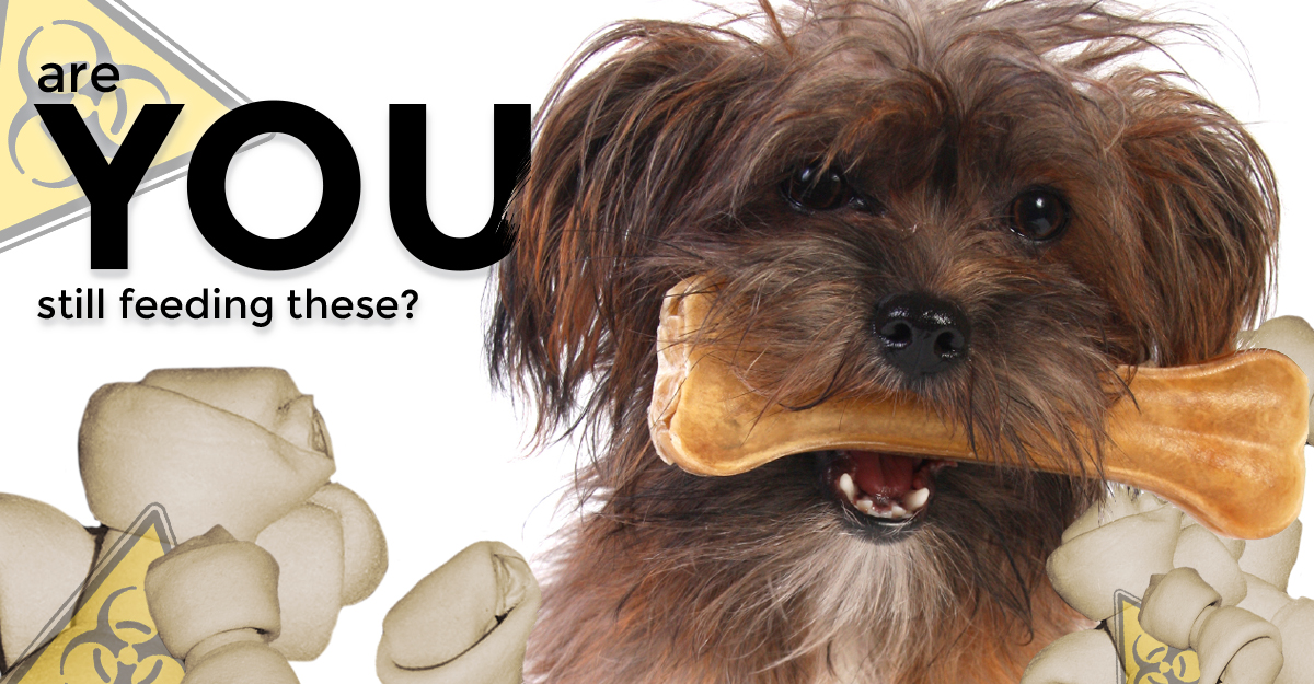 Rawhides; are you still feeding these?