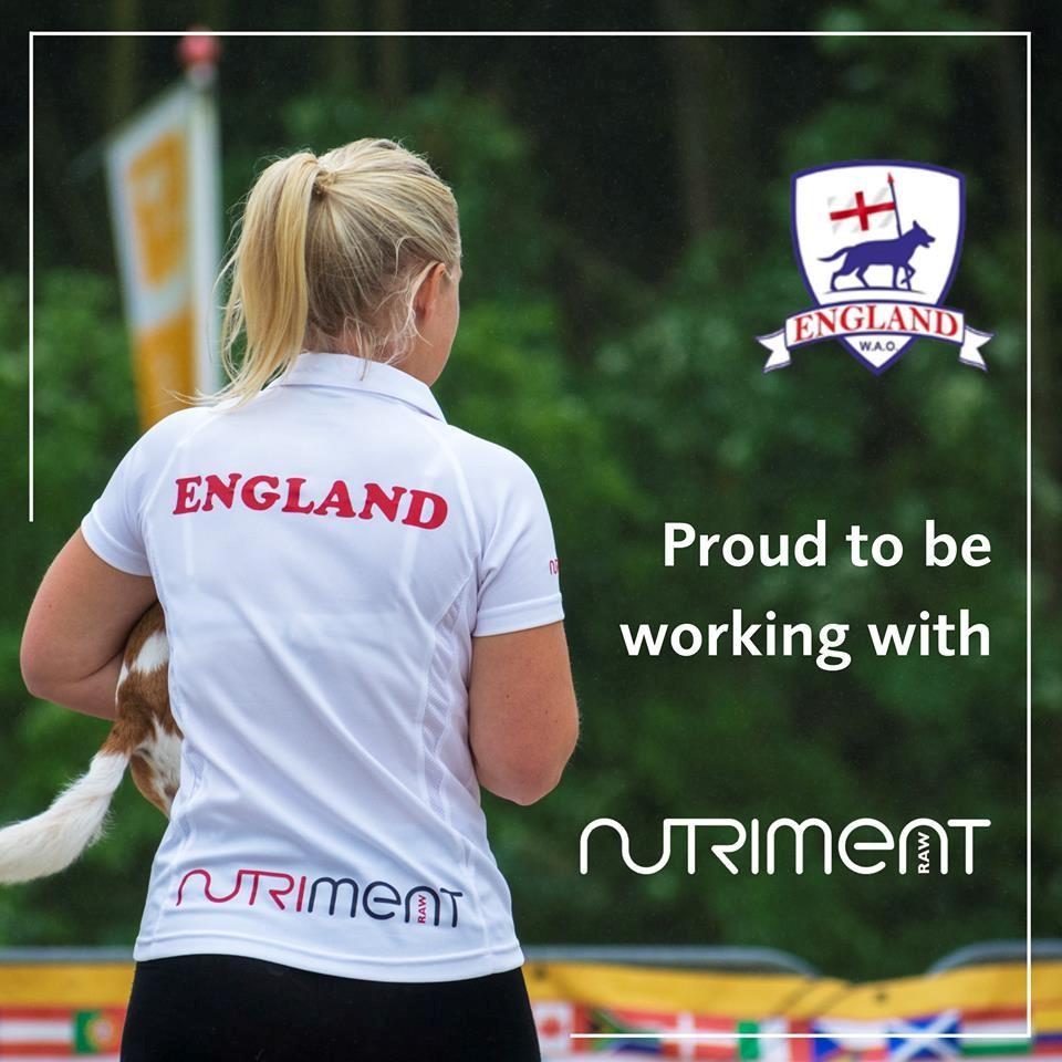 WAO Team England 2019 – An Introduction – Part 1
